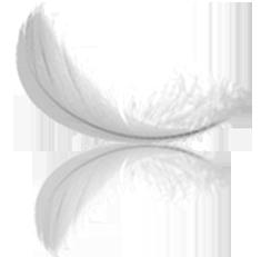 ezray-air-w-feather
